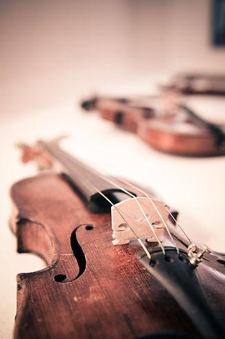 violin-338518_1920.jpg