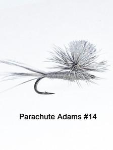 Parachute Adams 14.jpg