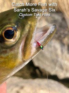 Catch More Fish 1.jpg