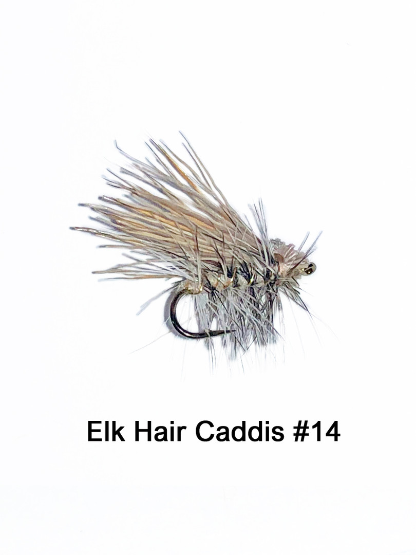 Elk Hair Caddis #14