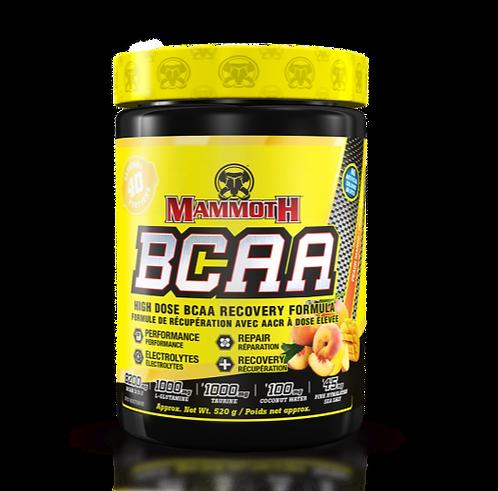 mammoth bcaa with added glutamine