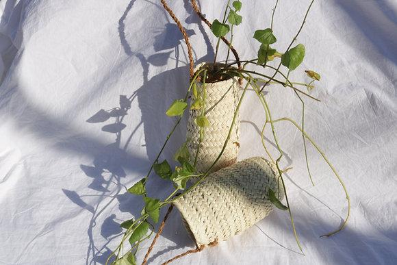 Oasis straw planter