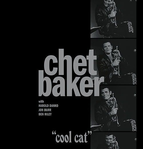 Cool Cat frontcover.jpg