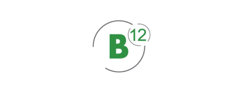 B12 Consulting