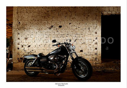 TN_Harley Parede 01.jpg