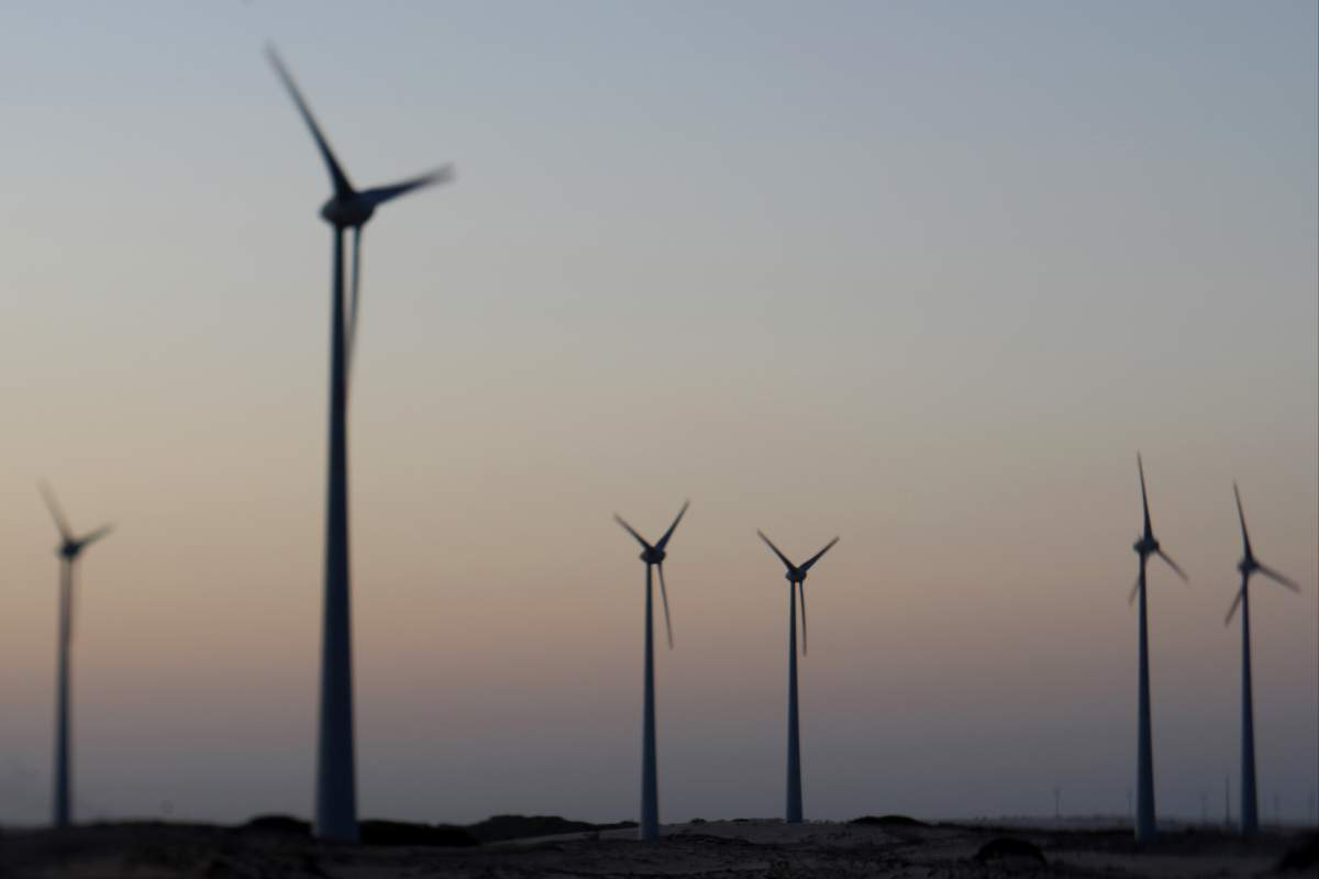 TN_BR_windmill_002.JPG