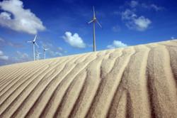 TN_BR_windmill_020.JPG