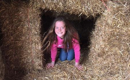 stone farm study centre bale maze