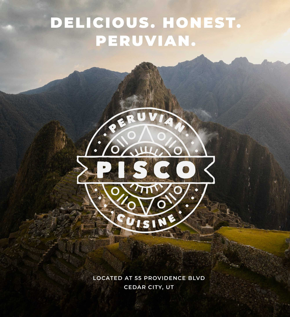 pisco_project_page_02.jpg