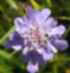 DSCN6244_edited.jpg