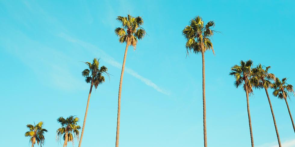 Zimní palmičky a chýšky