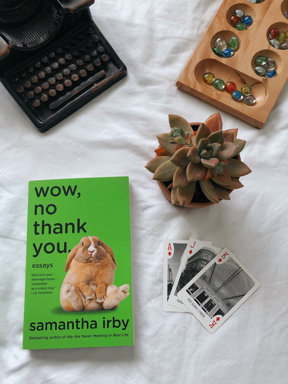 self isolation activities puzzles writing succulent plants wow no thank you penguin random house samantha irby and mancala games