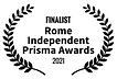 Rome finalist.png