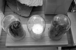 Phantom Laboratorium Iriscent Bliss