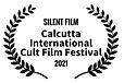 7.SILENT FILM WINNER.png