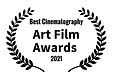 ART FILM AWARD BEST CINEMATOGRAPHY.png