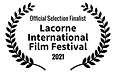 Official Selection Finalist.png