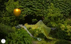 """"""" Des Rêves Dans Une Jardin Secret """""""