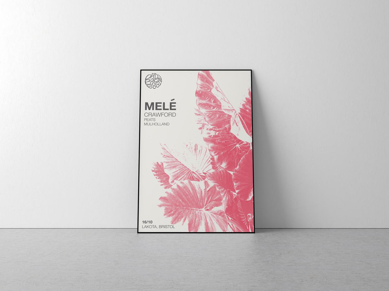 Framed Poster - DBB x Melé