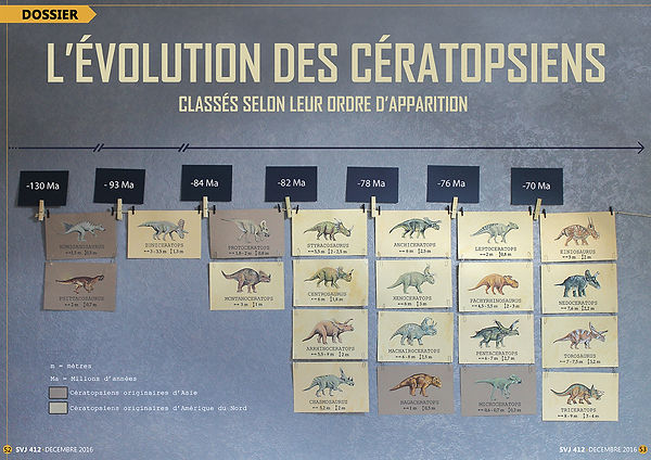 Cératopsiens Lucie Fiore illustration