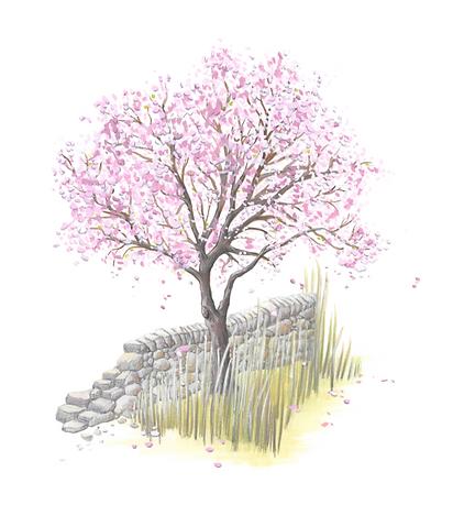 Lucie Fiore Illustration Amandier Agenda Nature Wapiti