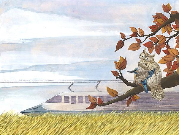Lucie Fiore illustration biomimétisme shinkansen hibou martin pecheur
