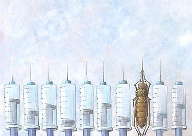 Lucie Fiore illustration biomimétisme moustique