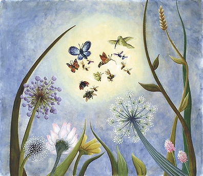 lucie fiore illustration pollinisateurs abeille