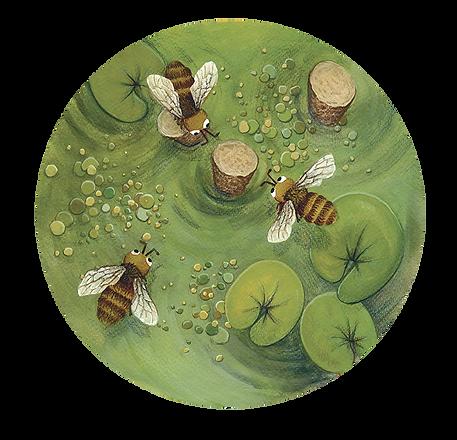 lucie fiore illustration sauver abeille