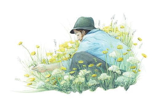 vie buissonniere editions de terran guide nature lucie fiore illustration