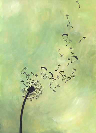 Lucie Fiore illustration biomimétisme parapente pissenlit