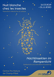 Lucie Fiore Illustration Exposition Pro Natura nuit insecte
