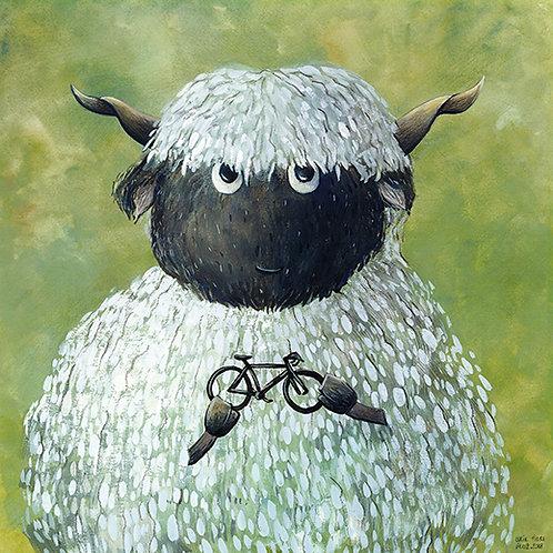 carte carrée - mouton et vélo