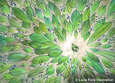 lucie fiore illustration nature oiseau