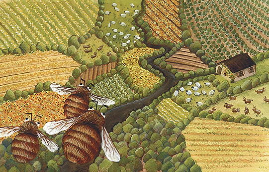 lucie fiore illustration disparition abeille