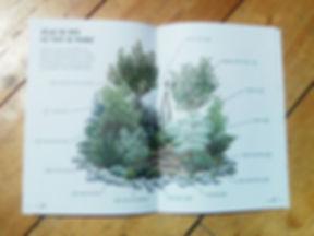 Lucie Fiore Illustration permaculture Pro Natura