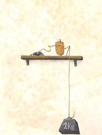 Lucie Fiore illustration biomimétisme araignée kevlar