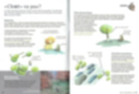 chat sauvage pro natua magazine lucie fiore illustration