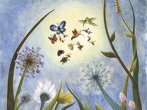 carte carrée - les pollinisateurs