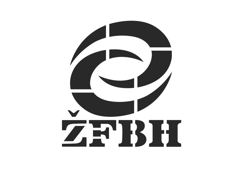 zusatz 11 zfbh logo.jpg