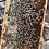 Thumbnail: Old Mill Honey