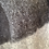 Thumbnail: Grey + Charcoal Large Check Scarf