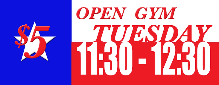 texas_flag_opengym.png