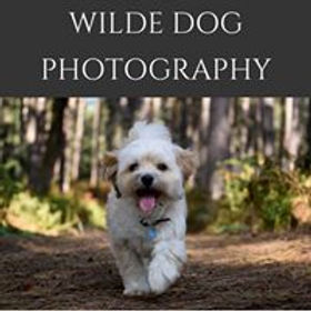 WildeDogPhotography