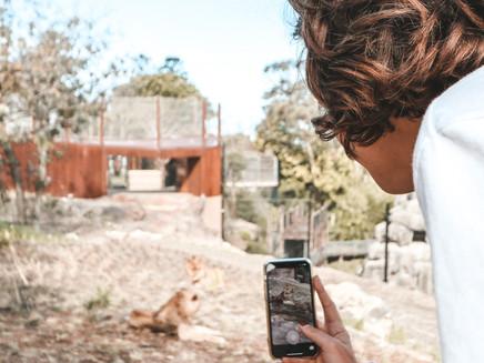 Taronga Zoo: We're Still Open!