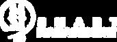 logo SM blanco copy.png