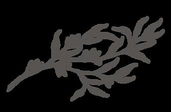 leafwebsite.png