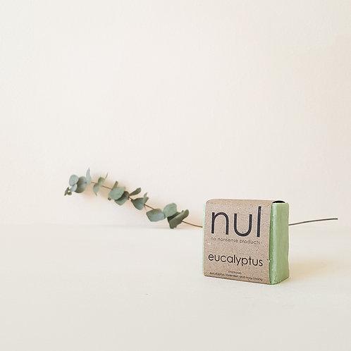 Shampoo Bar: Eucalyptus (For normal scalp and hair)