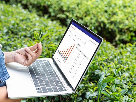 Como la Inteligencia Artificial dominará el mercado floricultor mundial