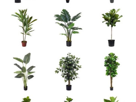 REALISTIC ARTIFICIAL TREES FROM AMAZON